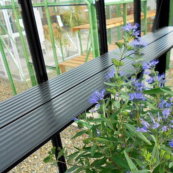 Elite Kensington 4 Lean To Greenhouse