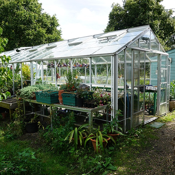 Robinsons Rosette Greenhouse