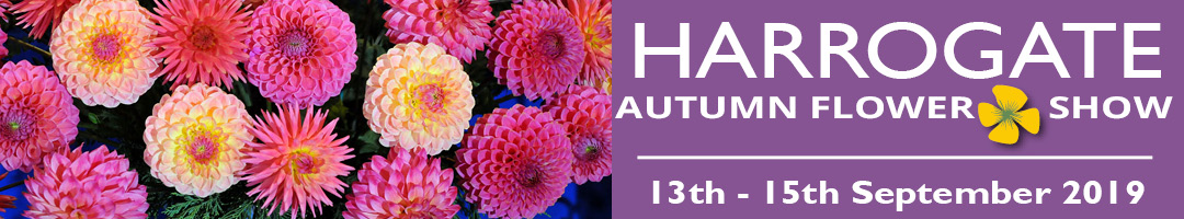GBC Buildings for Leisure | Come and see us at the Harrogate Autumn Flower Show 2019!