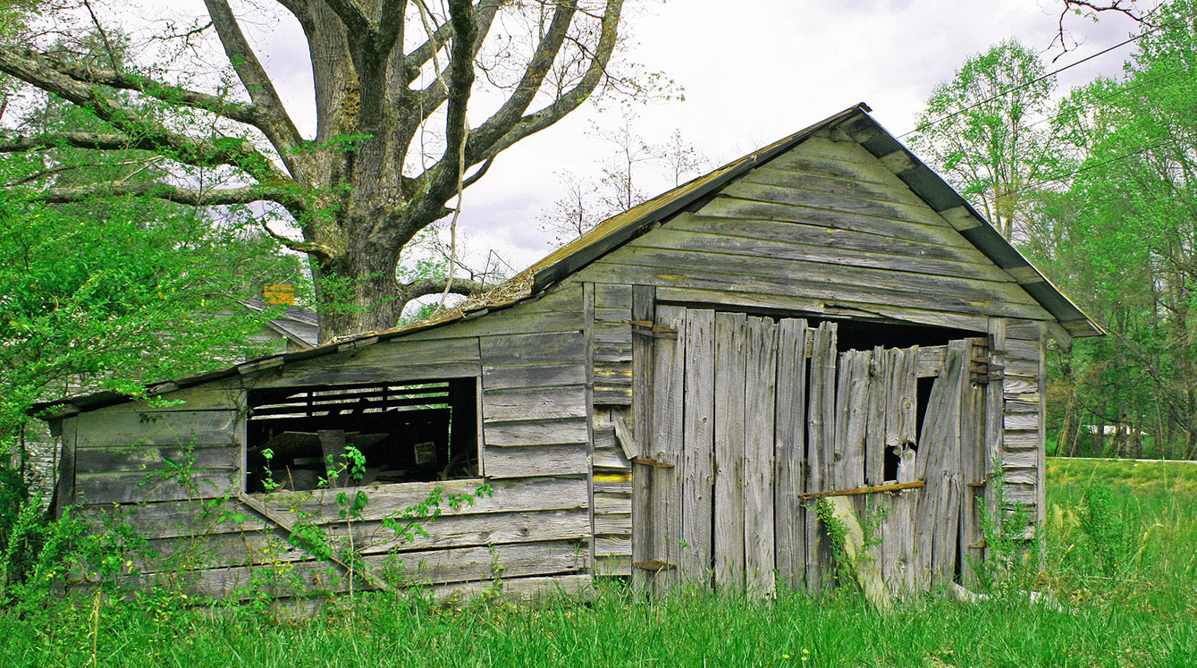 I think this old shed has seen better days!