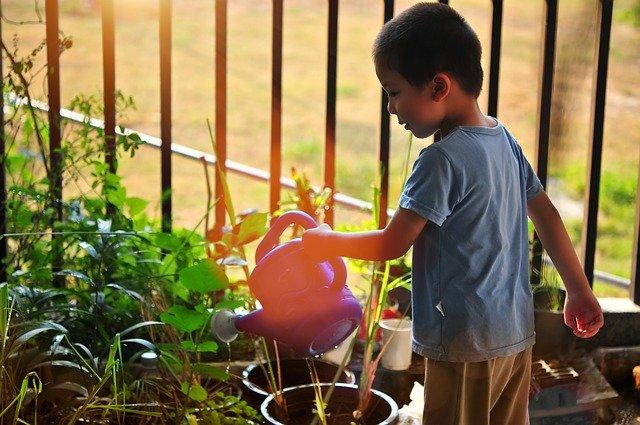 Dedicated Kids Garden